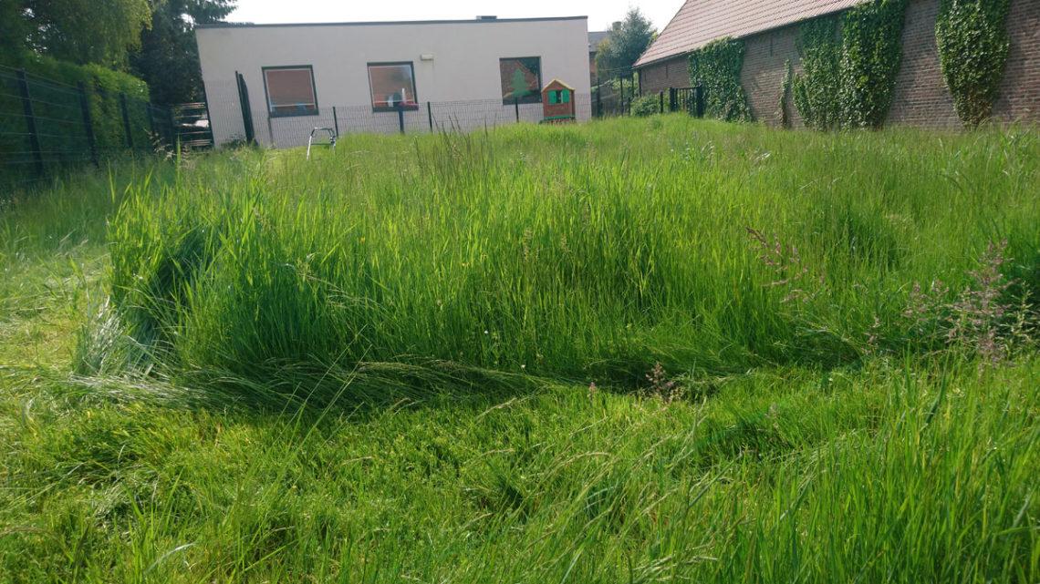 debroussaillage pelouse ethap.fr nord pas de calais